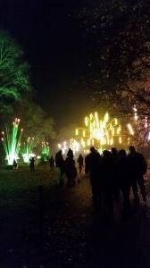Kew at Christmas 2
